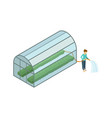 woman working in greenhouse isometric 3d element vector image