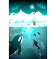 Underwater arctic life in a cold arctic night vector image