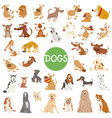 cute dog characters big set vector image vector image