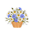 field daisies and cornflowers in a wicker basket vector image