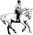 horse riding sketch vector image vector image