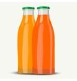 realistic juice botttle vector image