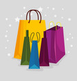 sale bags to special online offer vector image vector image