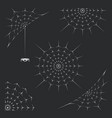 set of spiderweb vector image vector image