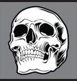 skull black 03 vector image vector image