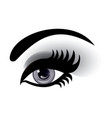 smoky eye vector image