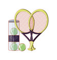 tennis ball in bottle with rackets icon vector image vector image