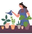 young woman watering houseplants vector image vector image