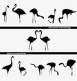 abstract logo exotic birds silhouette flamingo vector image