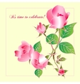 Beautiful rose isolated on yellow vector image