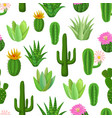cactus and succulent seamless pattern vector image