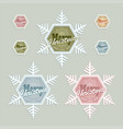 christmas snowflake in different colors set vector image