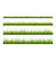 fresh green grass line flat seamless vector image vector image