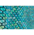 Hexagonal cells background vector image
