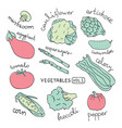 Set with hand drawn colorful doodle vegetables