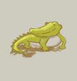 crocodile cartoon cute reptile animal hand drawn v vector image vector image