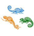 Green blue and orange chameleons vector image vector image