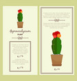 greeting card with gymnocalycium plant vector image vector image