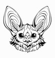 head a cute bat with shiny eyes and large ears vector image