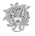 medusa gorgo sketch vector image vector image