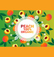 peach fruit colorful circle copy space organic vector image vector image