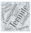 Termite Fumigation Concerns Word Cloud Concept vector image vector image