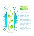 Bottle of water with a branch vector image vector image