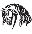 head of heavy horse vector image vector image
