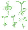 Set Hand draw Sprouts plants seeding vector image