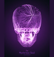 skull constructed with violet lines vector image vector image