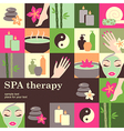 spa salon vector image