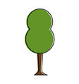 beautiful tree park icon vector image vector image