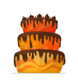happy birthday cake with chocolate vector image vector image