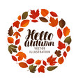 hello autumn banner leaf fall decorative leaves vector image vector image