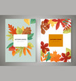 autumn leaves card templates set banners vector image vector image