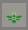 flat shading style icon plant plantago vector image vector image