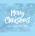 merry christmas and happy new year text holida vector image vector image