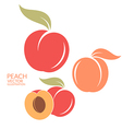 Peach Set vector image vector image