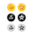 vip label or tag golden silver design badge vector image
