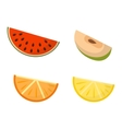 Fruit slices set vector image vector image