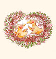 funny cartoon couple birds on beautiful vector image vector image