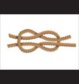 nautical rope knot vector image vector image