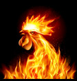 silhouette of head red cock fire rooster symbol vector image vector image