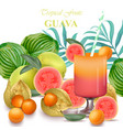 smoothie guava and gooseberry fruits realistic vector image vector image