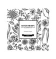 square floral design with black and white japanese vector image