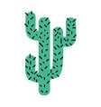 colorful natural cactus summer plant desert vector image