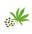 heap of hemp seeds icon healthy eating cartoon vector image