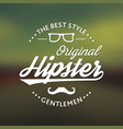 original hipster style poster vector image