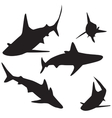 Shark silhouettes set vector image vector image