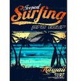 Tropical surfing at Hawaiian surf beach vector image